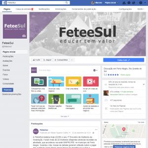 <b>FeteeSul</b><br>Gestão de site e Facebook com produção de conteúdo, matérias jornalísticas, fotos, vídeos, cards, campanhas
